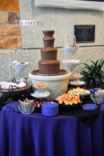 chocolate_fountain_-4569-_reception_dessert_fs_fs