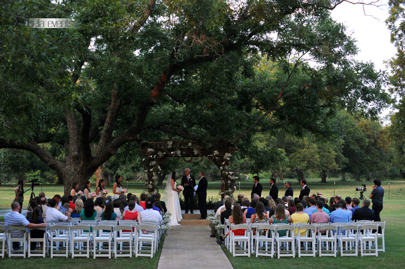 the orchard - wedding day - 2297