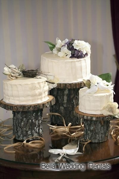 Wood Slices And Stumps